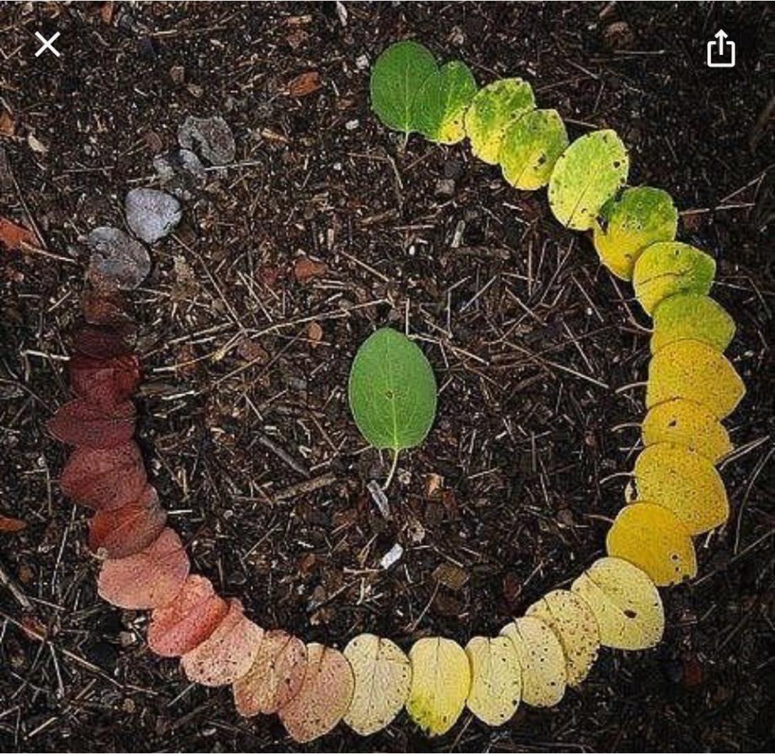 Seasons and cycles